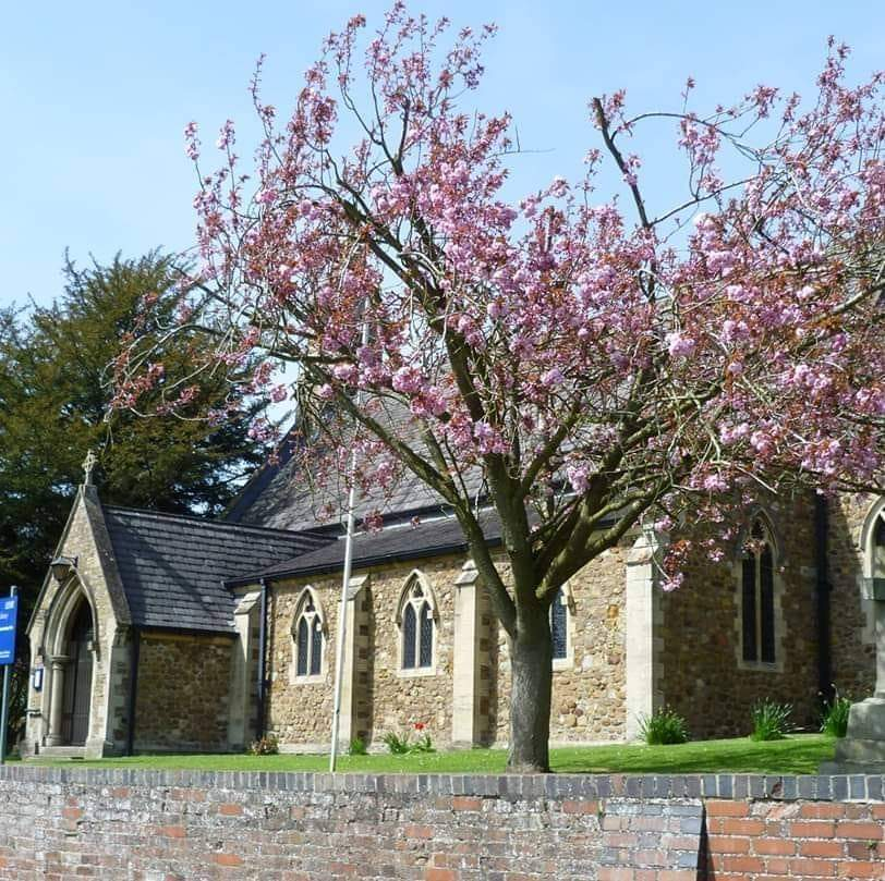 View of the Church with blossom